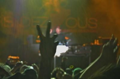 music festival crowd jackson hole 8
