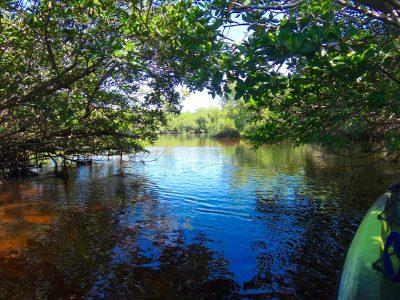 matlatcha-pass-aquatic-preserve-kayaking